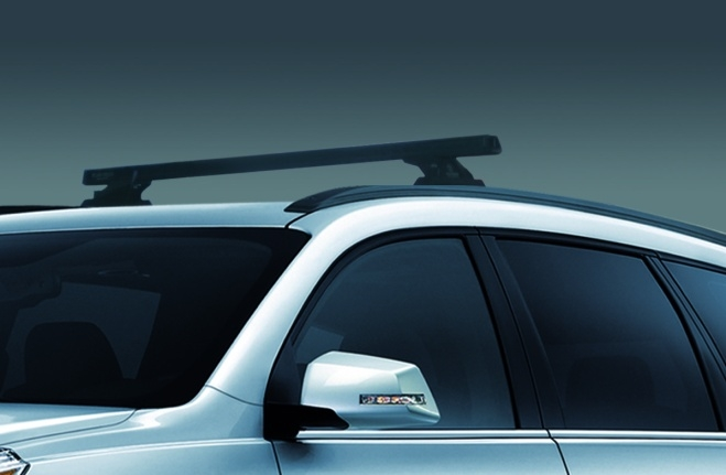 Two Poles Roof Rack