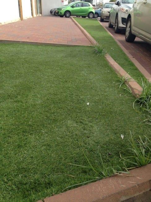 הגדול שטיחי דשא סינטטי במראה רענן ומחיר זול, חיתוך לפי מידה – הום דקור VH-54