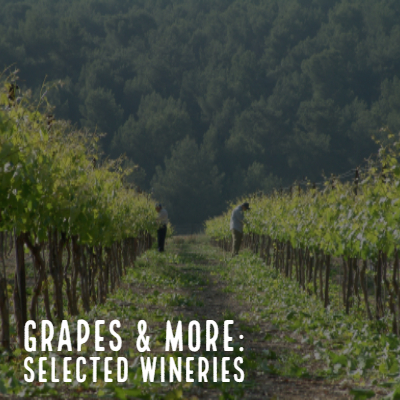 Grapes and More: Selected Wineries